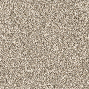 Carpet stores Mississauga